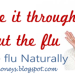 Natural Flu Fighters and Immunity boosters.