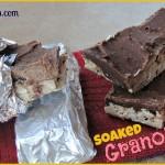 Soaked Homemade Granola Bars