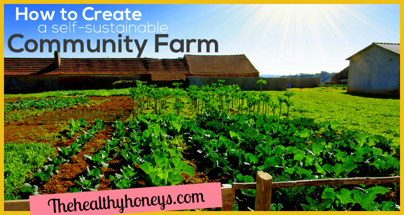 How to Create a Self-Sustainable Community Farm