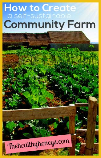 self-sustainable community farm